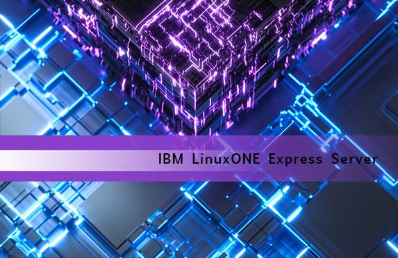 BLOG: IBM LinuxONE Express Server